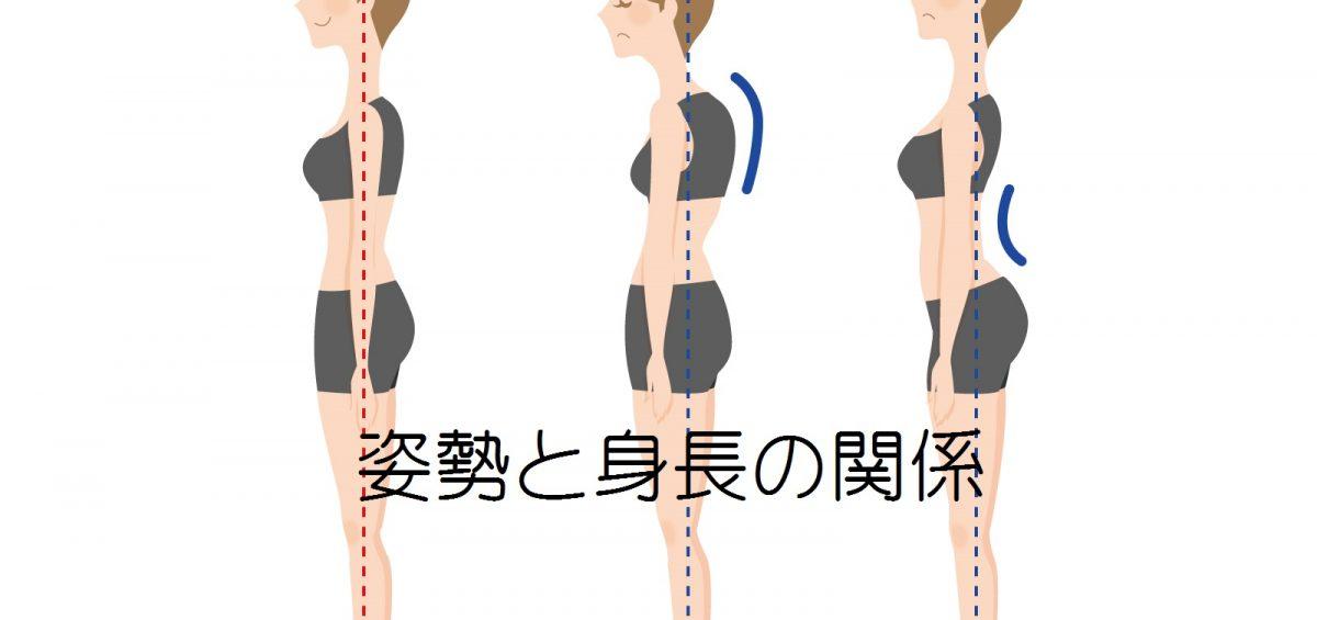 姿勢と身長の関係